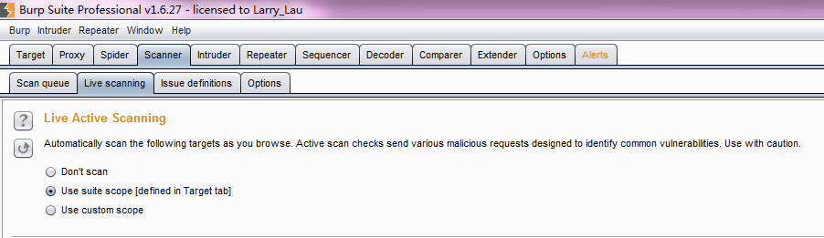 Burp Scanner